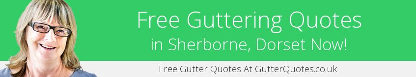 best Sherborne guttering companies covering DT9