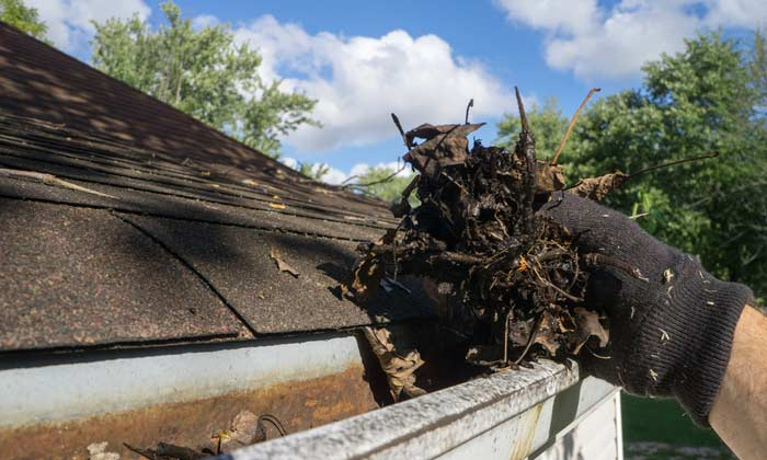 services for unblocking clogged guttering